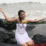 Anjali Pandey wet and sexy in white Dress