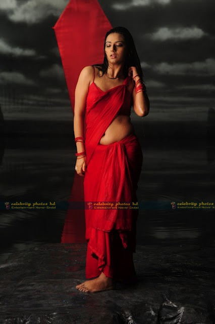 Isha_Chawla_Hot_Wet_saree_prema_kavali_04