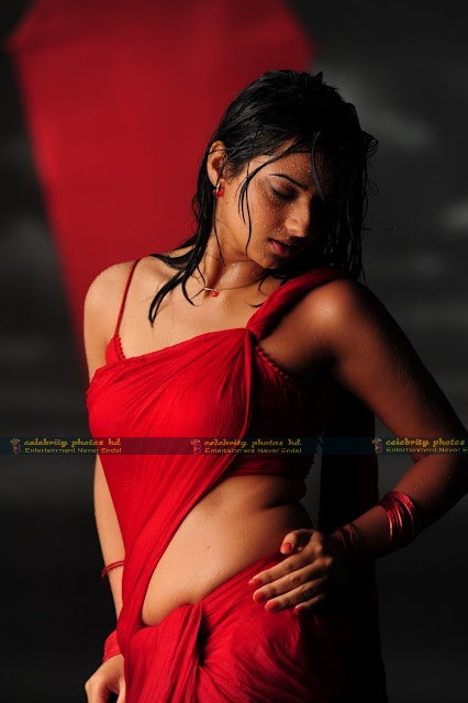Isha_Chawla_Hot_Wet_saree_prema_kavali_06