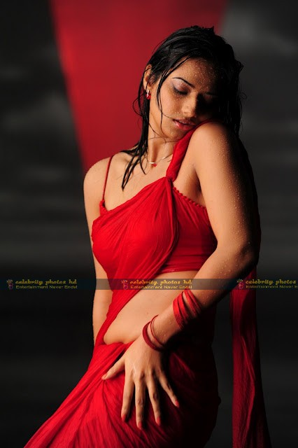 Isha_Chawla_Hot_Wet_saree_prema_kavali_10