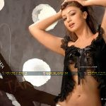 Ayesha Takia Indian Celebrity Hot Images