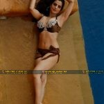 Amisha looks super hot in this choclate bikini