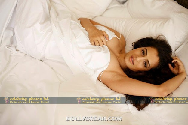 bollybreak_com_This-is-how-Ameehsa-looks-in-bed-under-the-covers.-Ameesha-Patel-Hot-Bikini-Pics