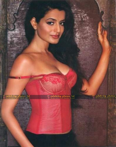 hot-actress-amisha-patel-in-sexy-dress-stills