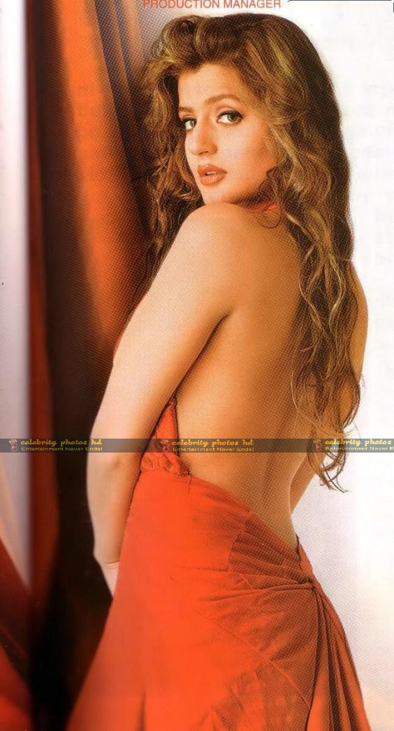 hot-sexy-amisha-patel-wallpaper