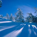 Winter and Snowfall landscape HD Wallpaper Collection