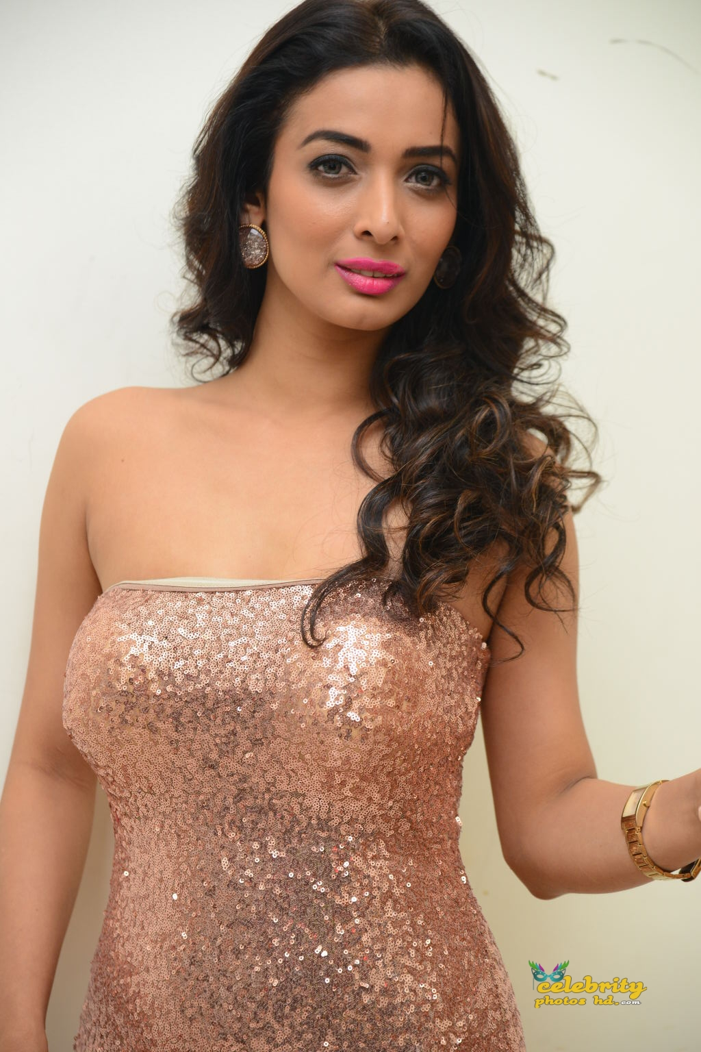 heena-panchal-stills-at-thikka-audio-launch-10