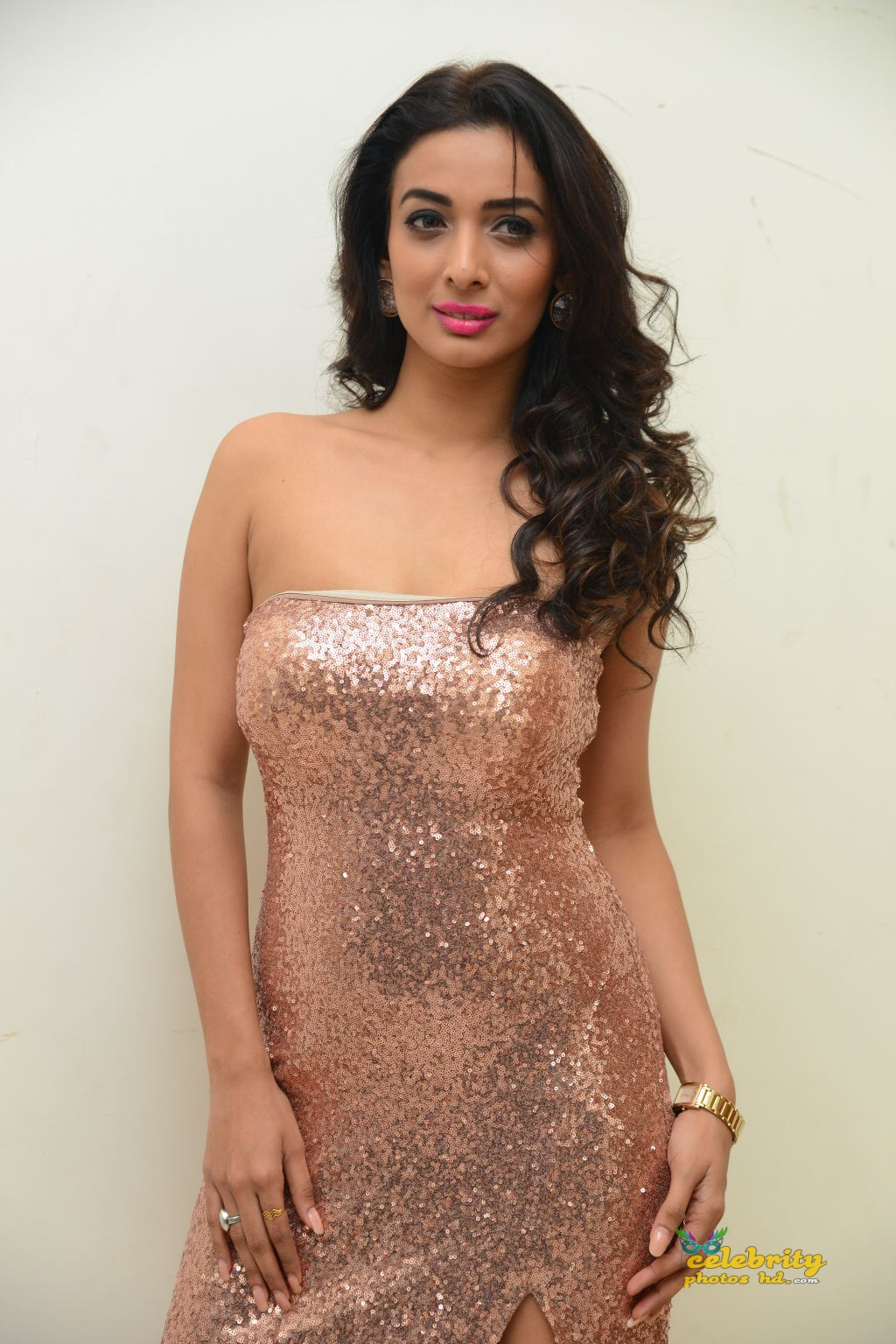 heena-panchal-stills-at-thikka-audio-launch-11