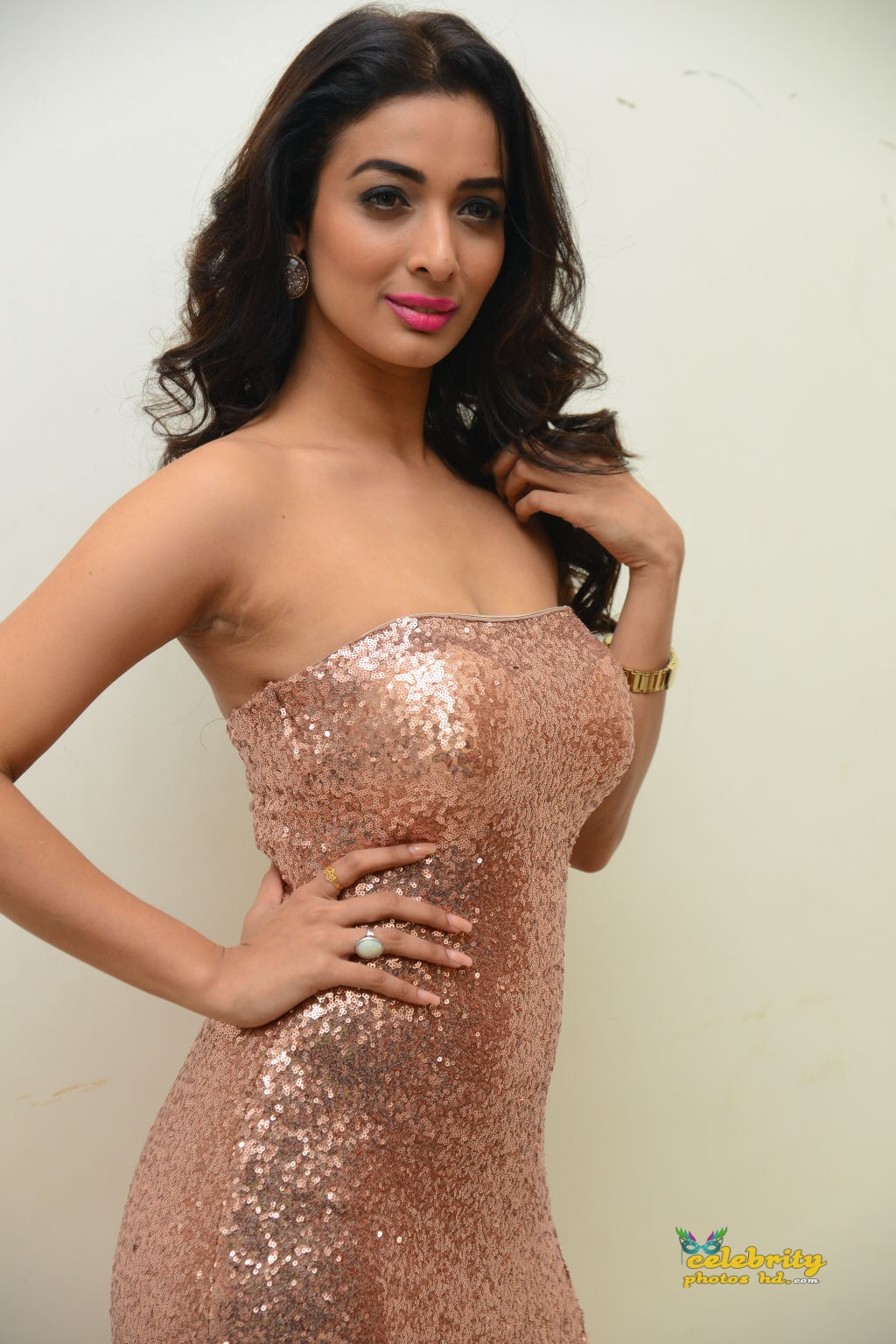 heena-panchal-stills-at-thikka-audio-launch-12