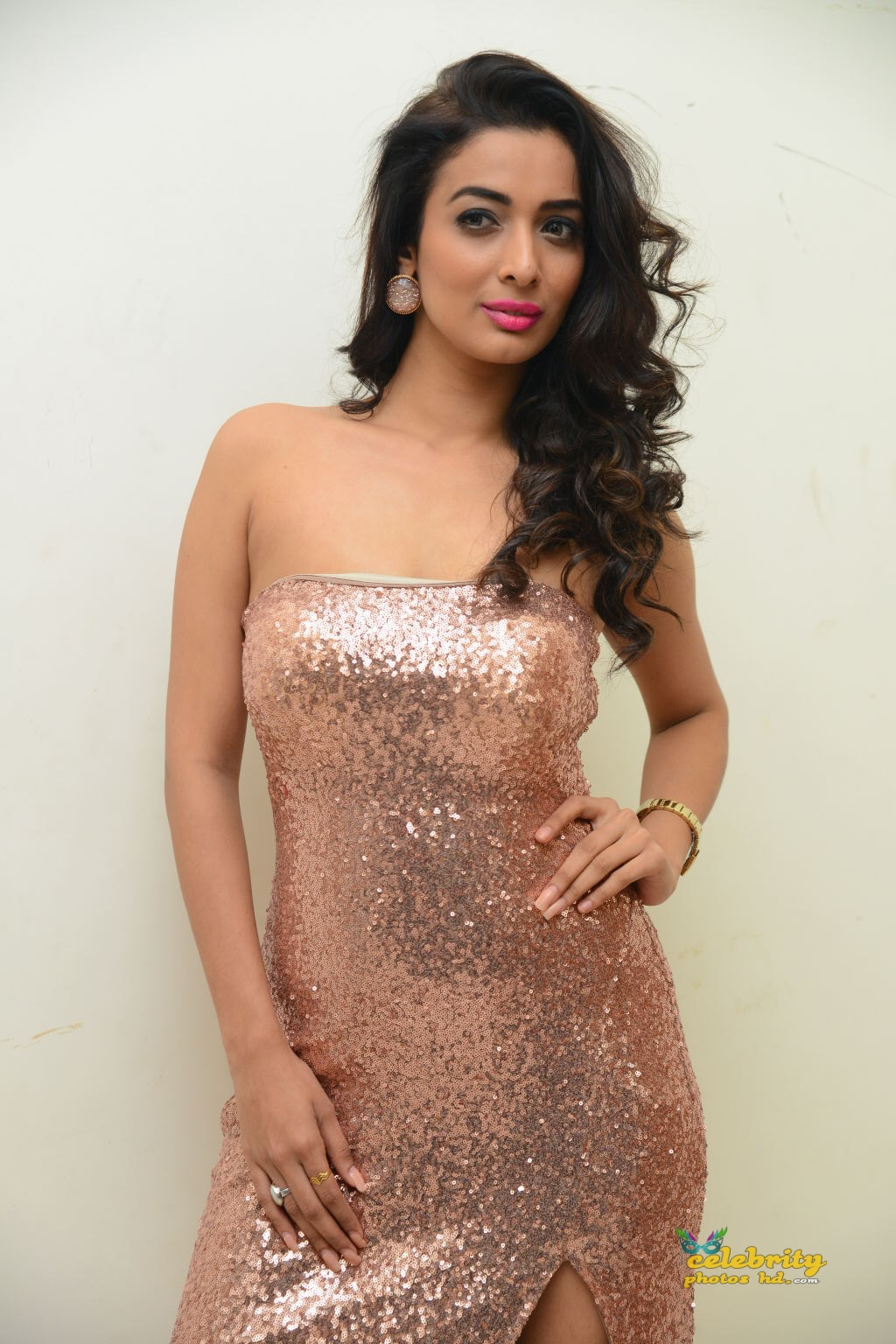 heena-panchal-stills-at-thikka-audio-launch-16