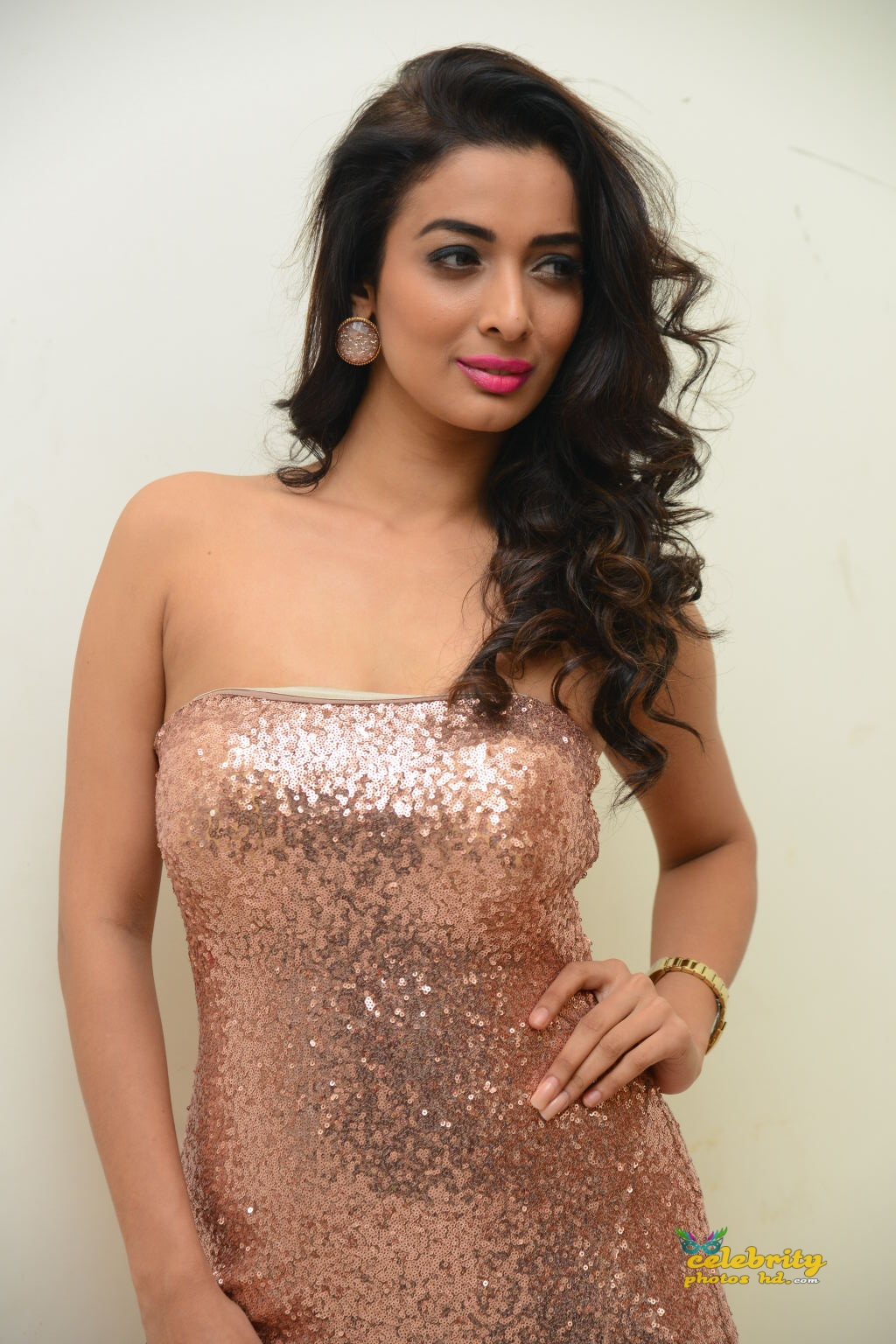 heena-panchal-stills-at-thikka-audio-launch-17