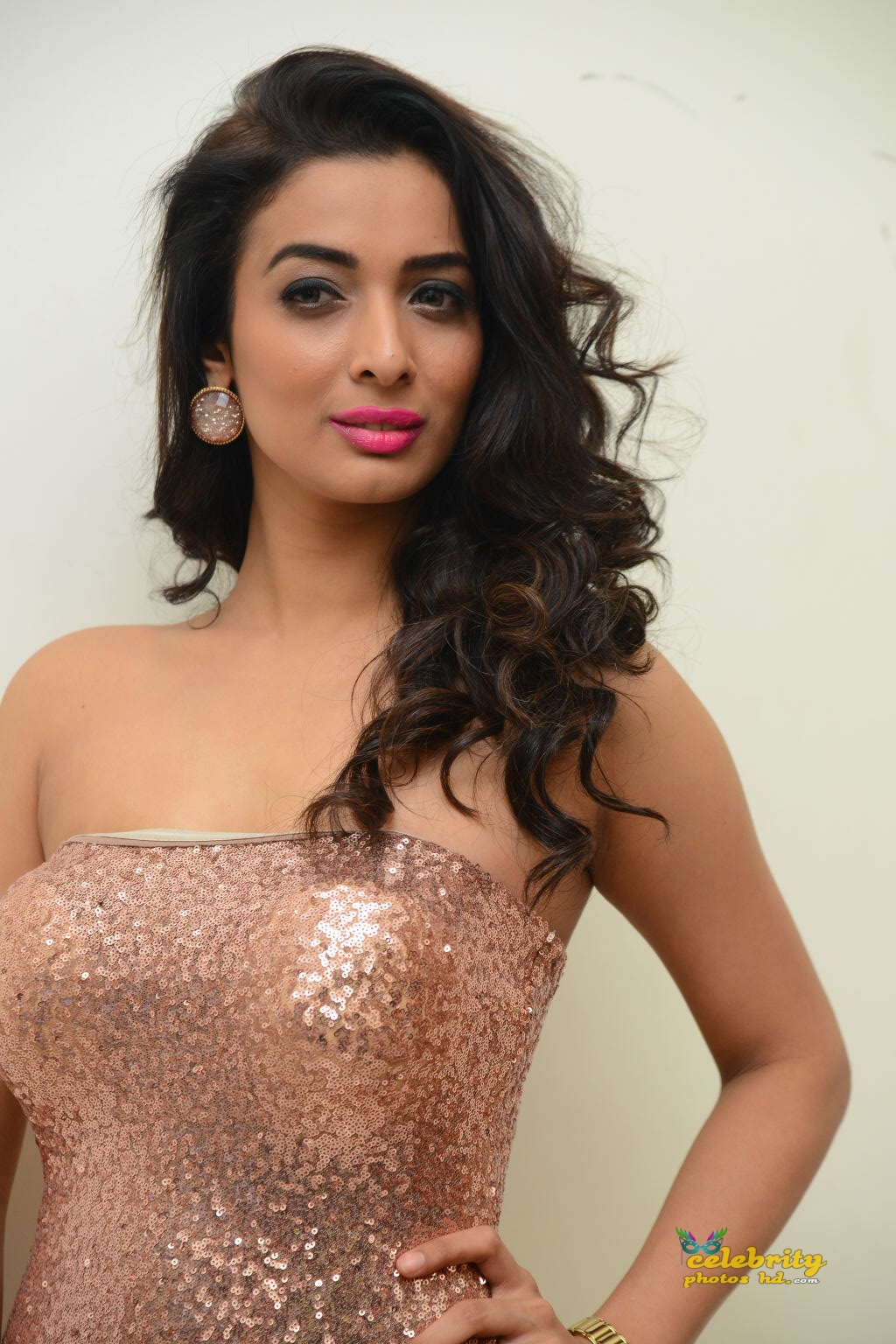 heena-panchal-stills-at-thikka-audio-launch-19