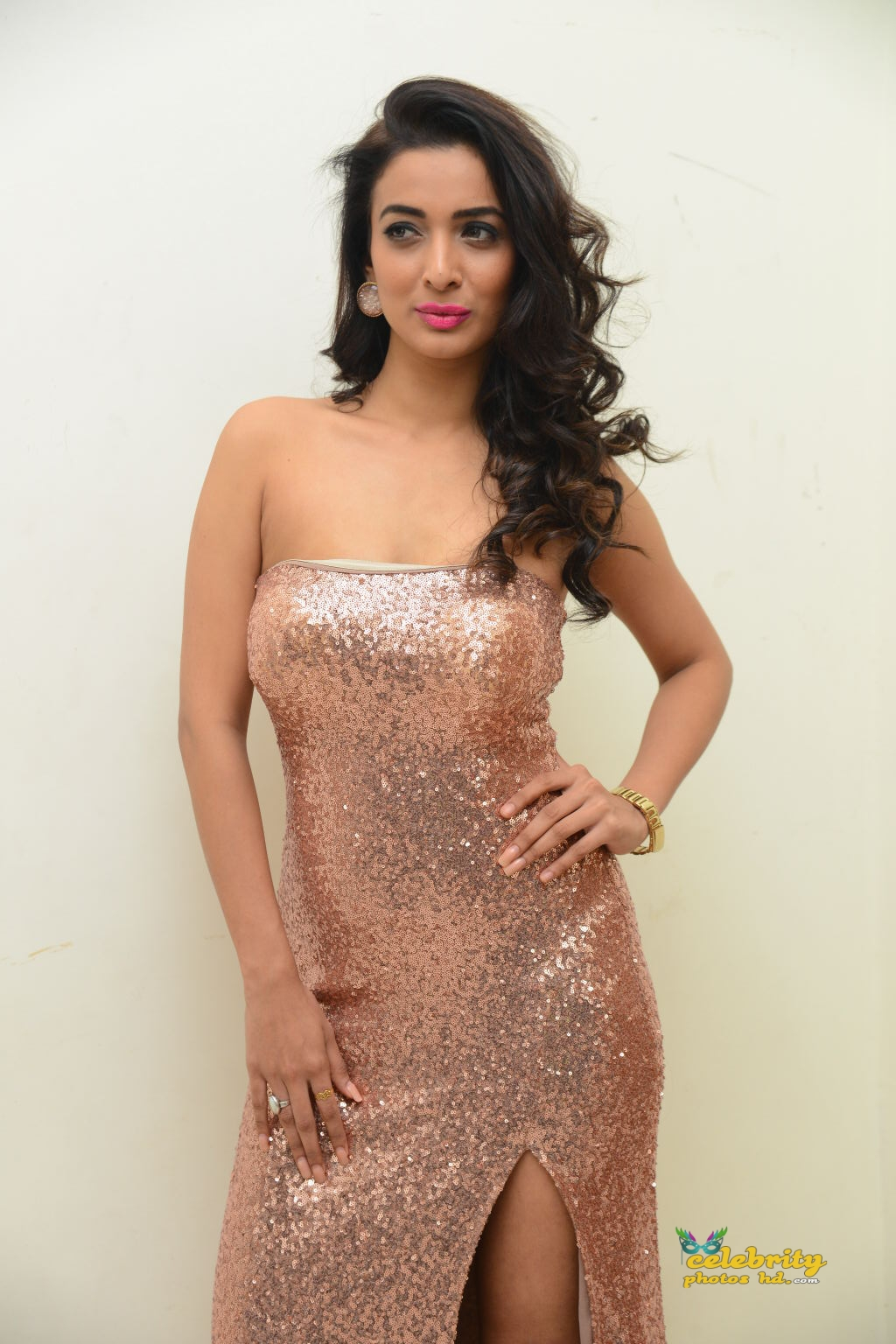 heena-panchal-stills-at-thikka-audio-launch-22