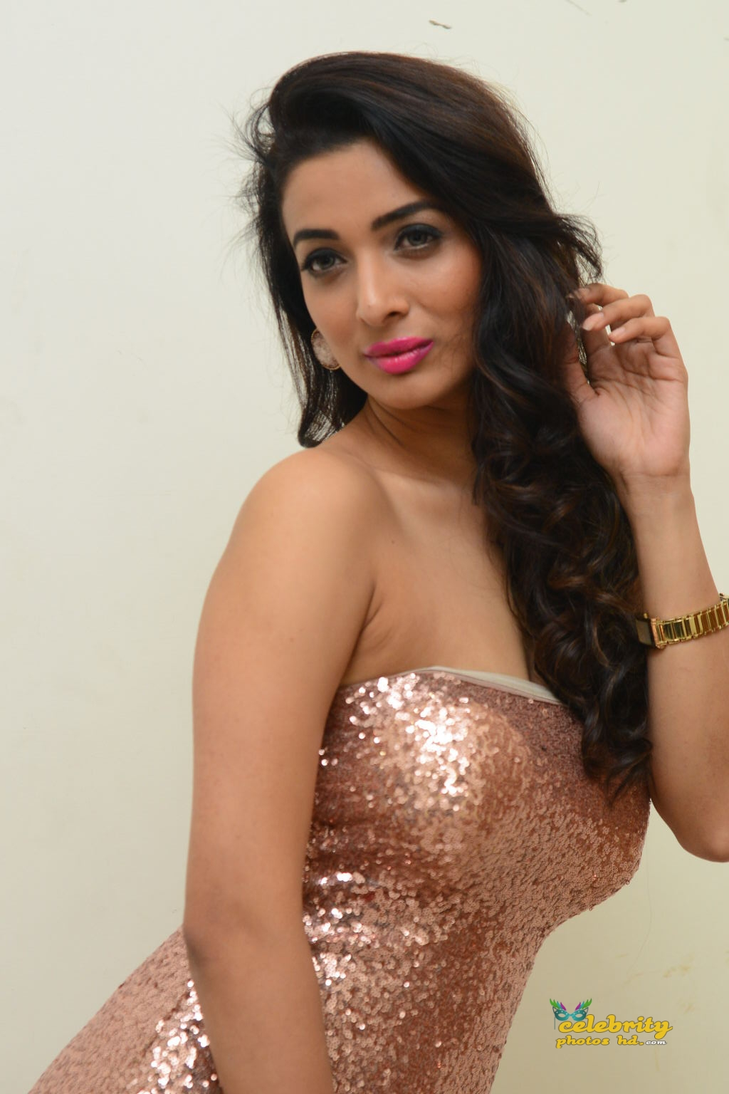 heena-panchal-stills-at-thikka-audio-launch-27