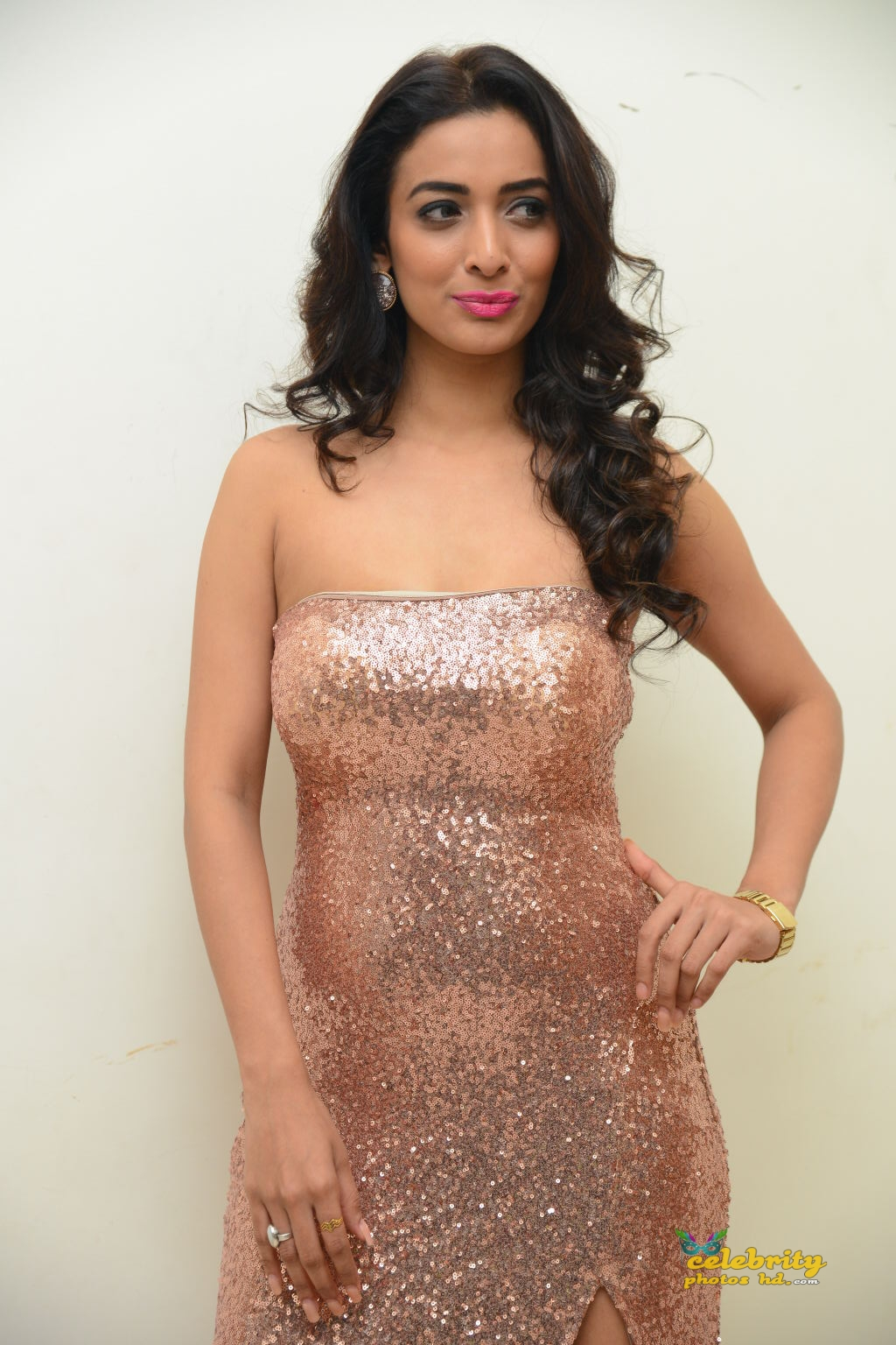 heena-panchal-stills-at-thikka-audio-launch-8