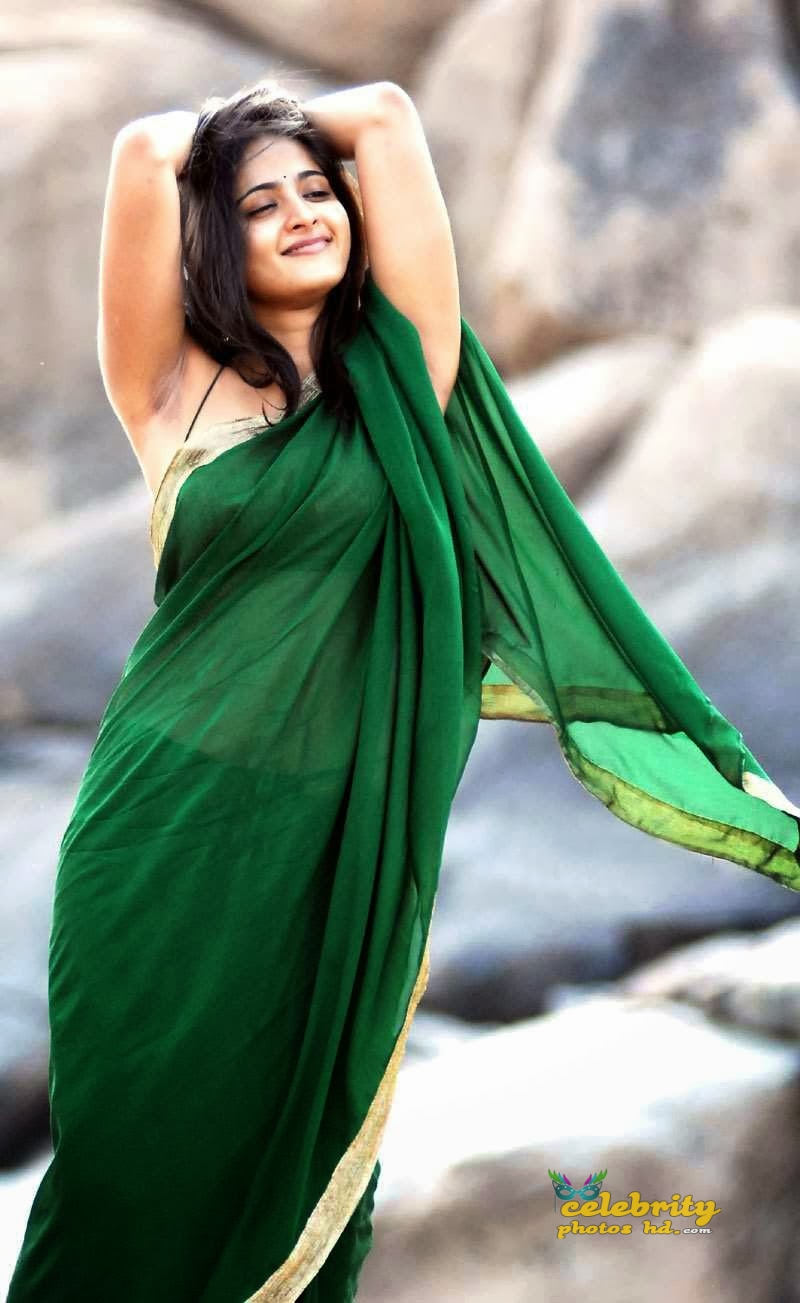 anushka-very-hot-in-saree-stills-824334f3