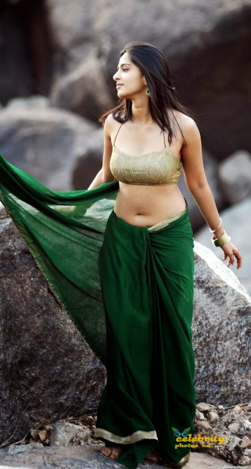 hot-actress-anushka-shetty-saree-blouse-navel-spicy-stills-actressinsareephotos-blogspot-com-saree-1141226037