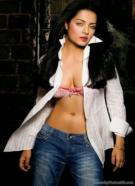 celina-jaitley-top-10-unseen-hot-photos-1
