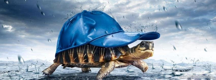 facebook-best-creative-cover-photos-for-your-timeline-6