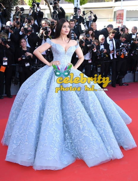 Real life fairy tale princess Aishwarya At Cannes (2)
