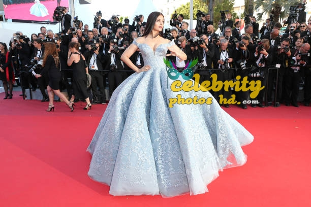 Real life fairy tale princess Aishwarya At Cannes (4)