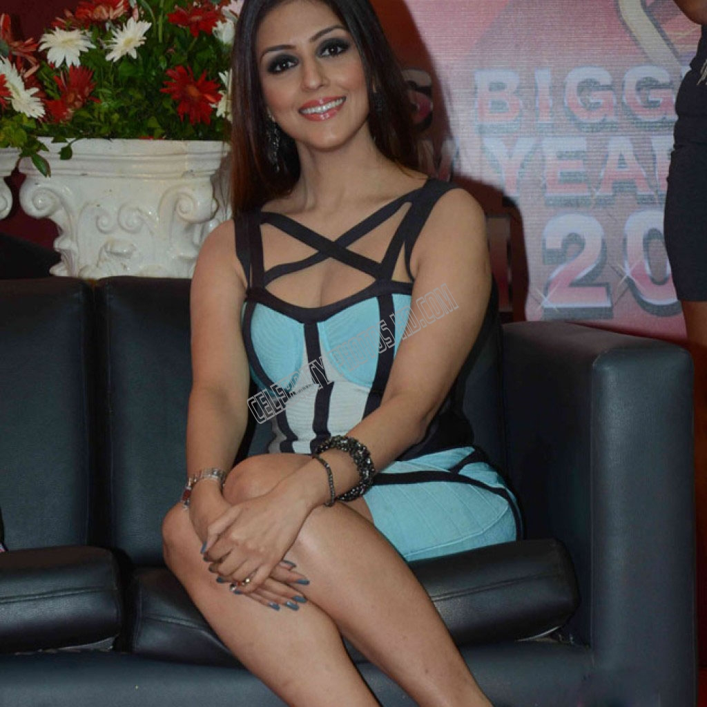 Aarti Chabria Hot Photo (4)