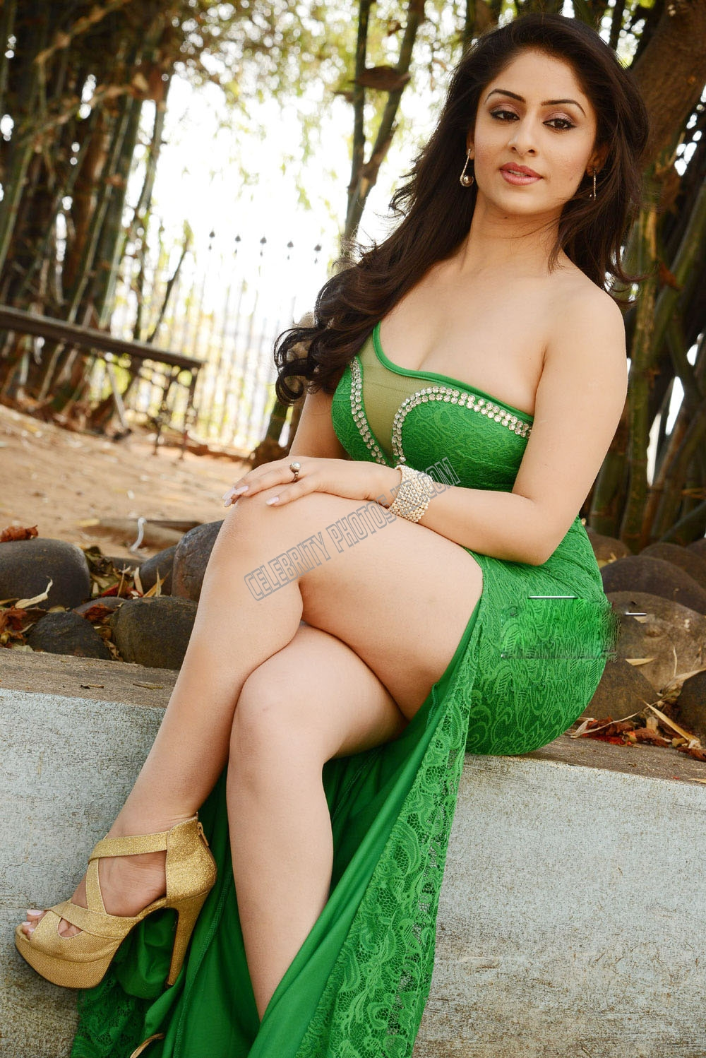 Ankita Sharma Hot Photoshoot (2)