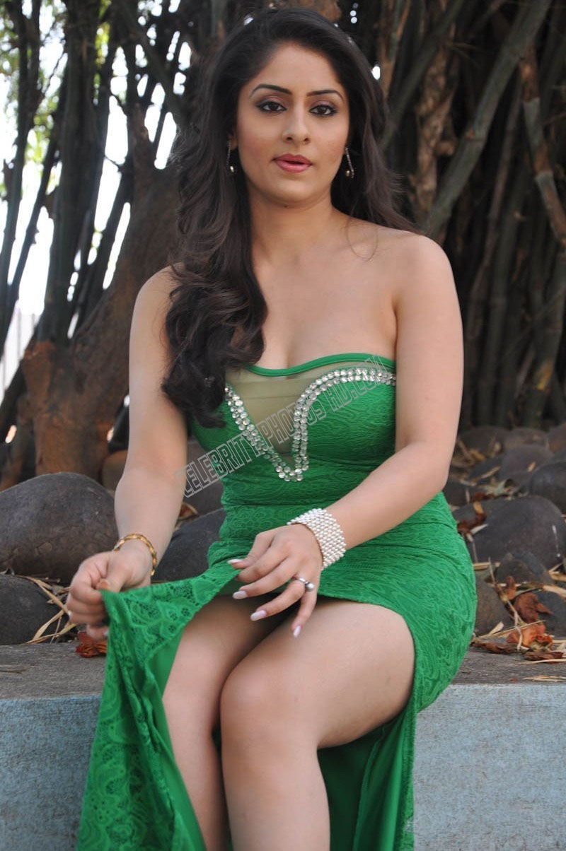 Ankita Sharma Hot Photoshoot (4)