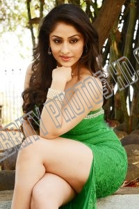 Ankita Sharma Hot Photoshoot (6)
