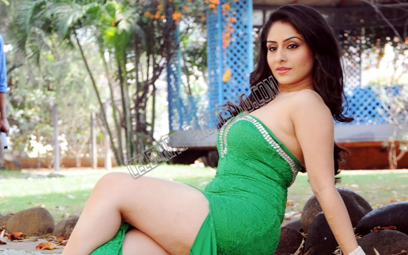 Ankita Sharma Hot Sexy Photoshoot