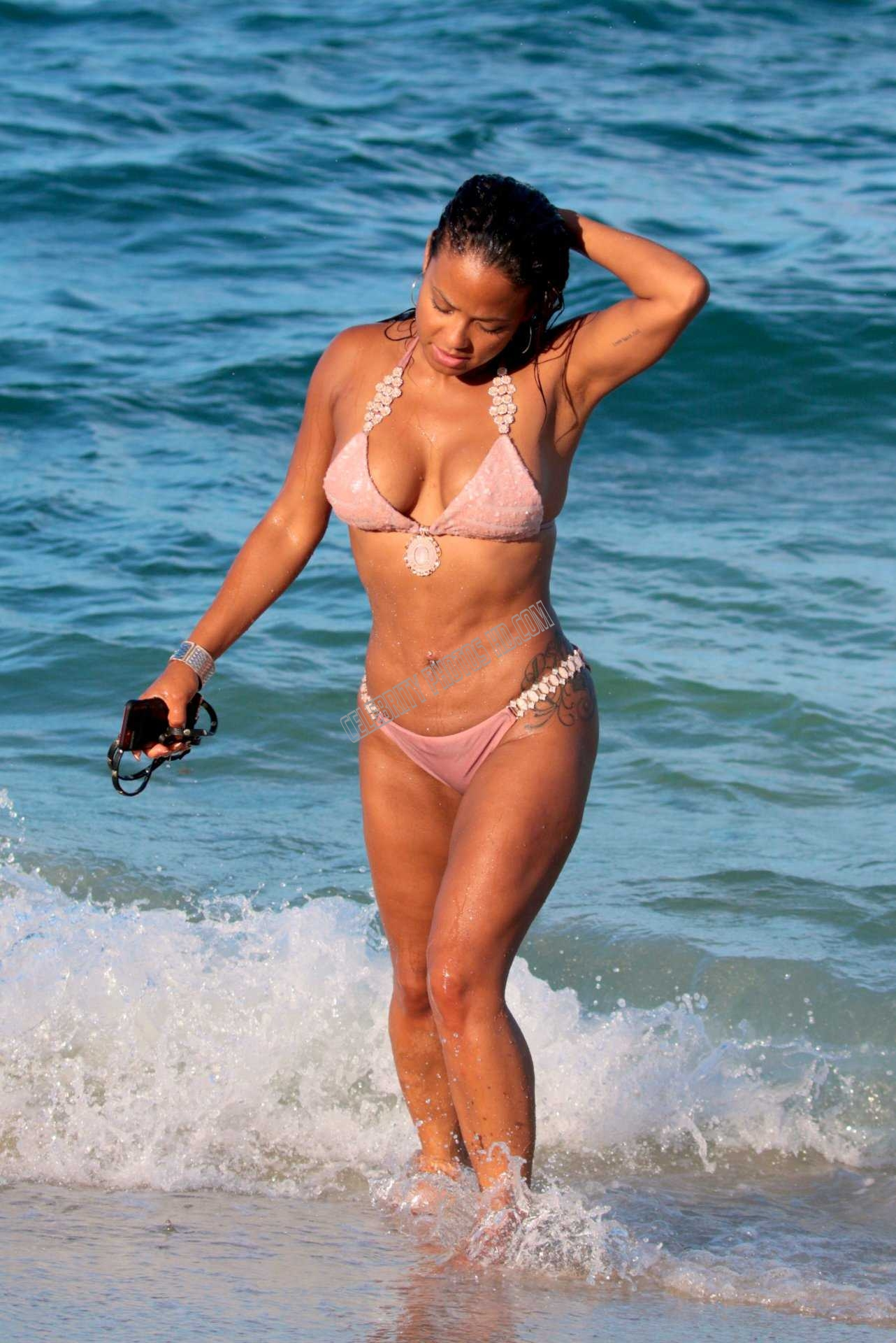 Christina Milian Bikini Hot Celebrity Photos (6)