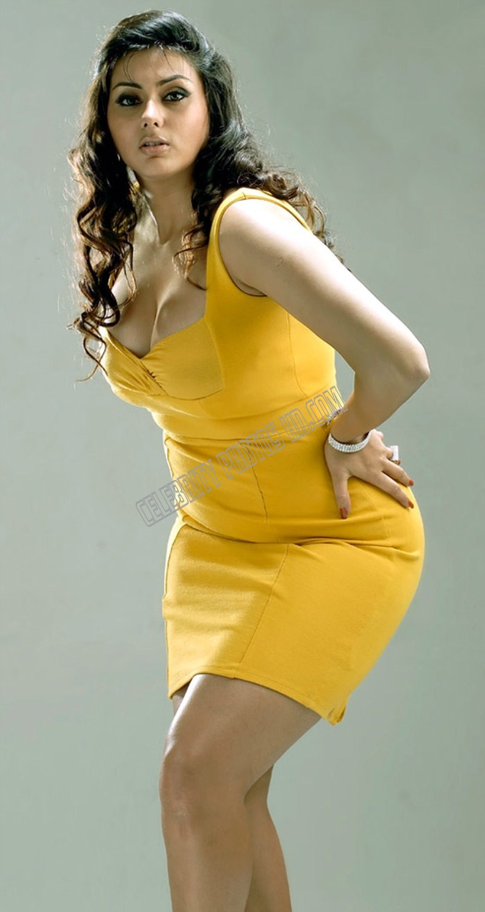 Hot South Indian Actress Namitha Kapoor Photos (3)