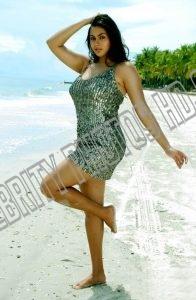 Hot South Indian Actress Namitha Kapoor Photos (7)