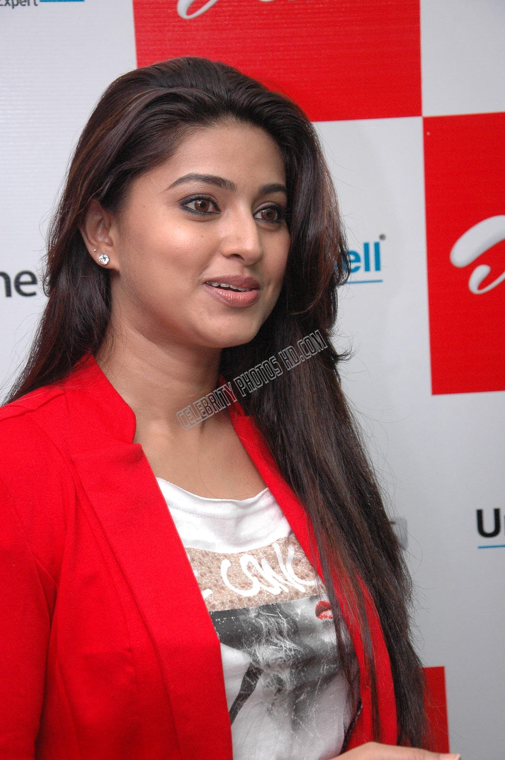 Indian Film Actress Sneha Hot Photo (3)
