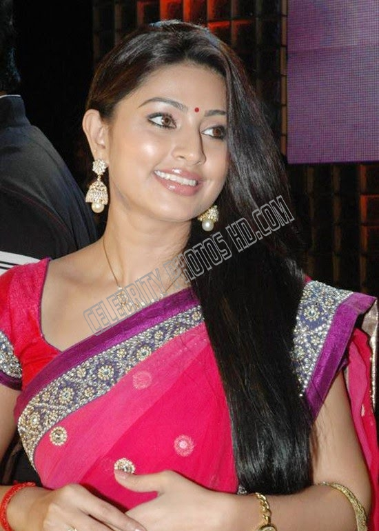 Indian Film Actress Sneha Hot Photo (5)