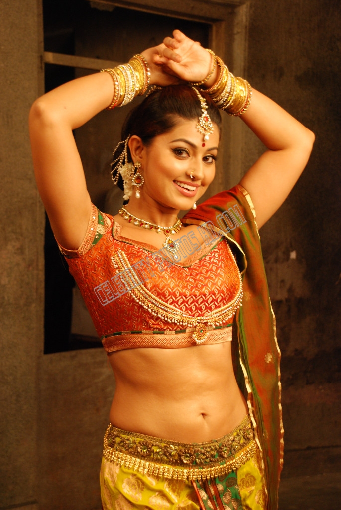 Indian Film Actress Sneha Hot Photos (3)