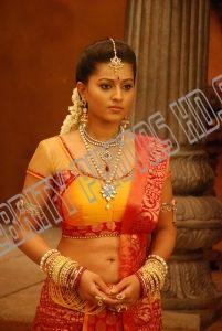 Indian Film Actress Sneha Hot Photos (5)