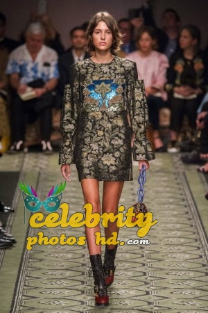 Fashion Show Top Trends Photos 2017 (1)