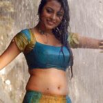 Meenakshi Hot Navel Wet Half Saree Stills In Rajathi Raja photos