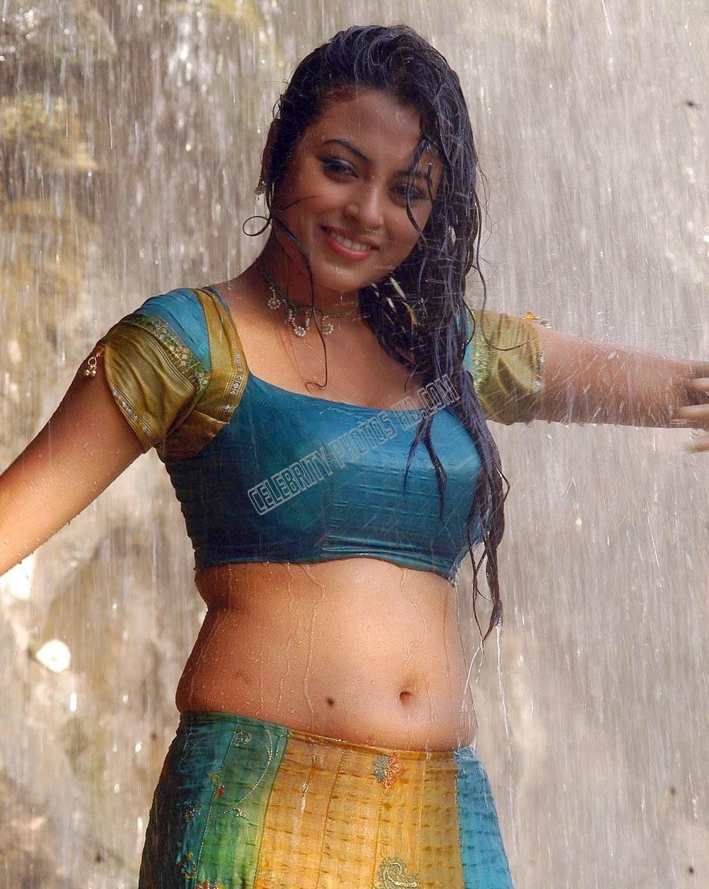 Meenakshi Hot Navel Half Saree (3)