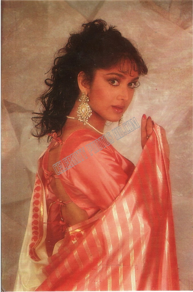 Meenakshi Sheshadri Hot Photos (1)