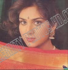 Meenakshi Sheshadri Hot Photos (5)