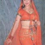 Meenakshi Sheshadri Hot Sexy Beautiful Sizzling  Photos Hot Navel Wet Half Saree