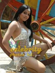 Rachana Maurya New Spicy Still Photos (11)