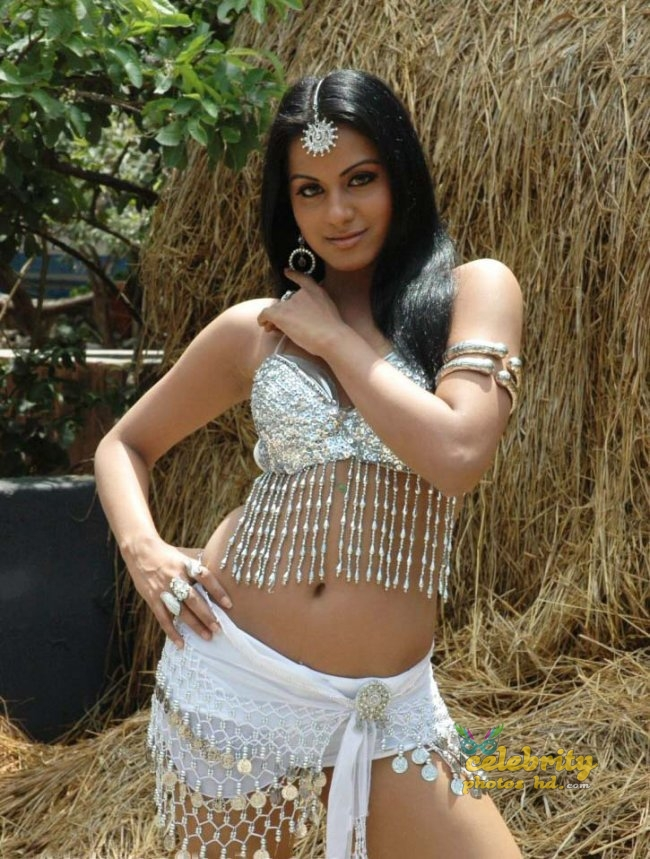 Rachana Maurya New Spicy Still Photos (17)