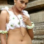 Indian Actress Ragini Dwivedi Hot Sexy Images Gallery – Celebrity Photos HD