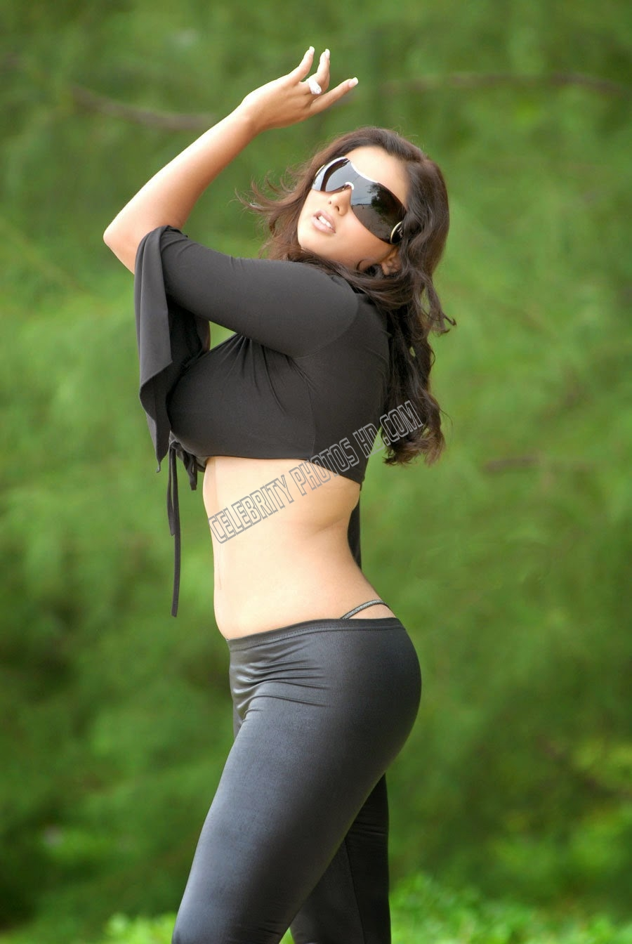 South Indian Actress Namitha Spicy i Hot Photos (2)
