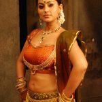 South Indian Film Actress Sneha Hot Photos and Wallpapers