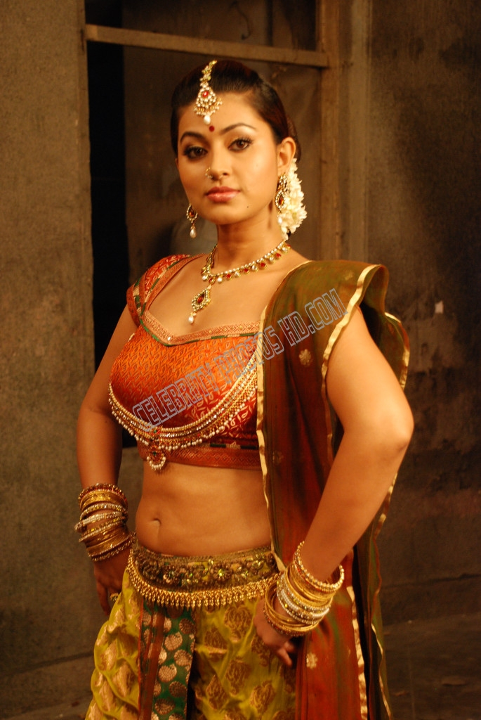 South Indian Film Actress Sneha Hot Photos