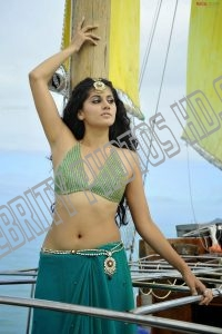 Taapsee Pannu Hot Navel Photos (4)